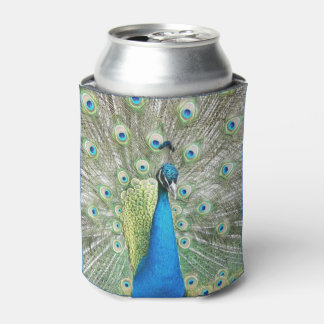 Peacock Plumage Photo Can Cooler