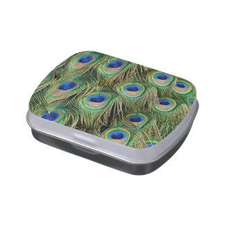 Peacock Print Candy Tin