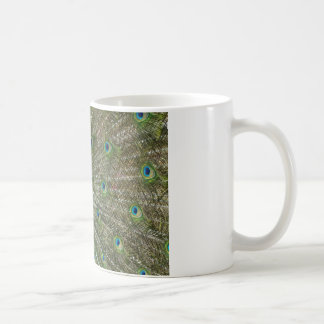 Peacock Showoff Basic White Mug