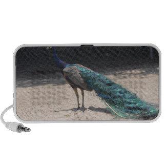 peacock notebook speaker