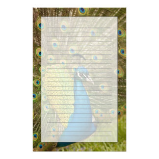 Peacock strutting custom stationery