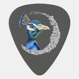Peacock Watercolor with Faux Silver Glitter Guitar Pick