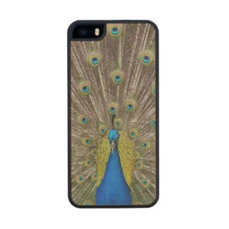Peacock Wood iPhone SE/5/5s Case