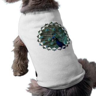Peafowl Bird Pet Shirt