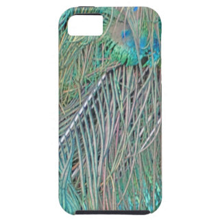 Peafowl Decadence iPhone 5 Cases