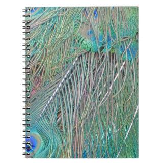 Peafowl Decadence Notebooks