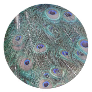 peafowl feather spreed party plates
