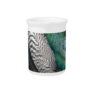 peafowl feathers small eyes pitcher