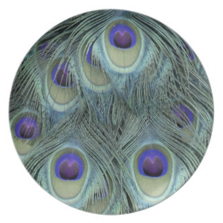 Peafowl Feathers With Big Eyes Dinner Plates