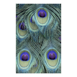 Peafowl Feathers With Big Eyes Stationery