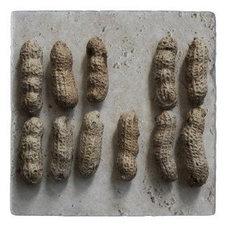 Peanuts Still Life Trivet