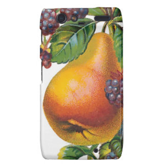Pear and Blackberries Razr Case