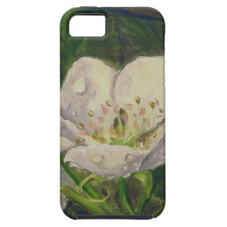 Pear Blossom Dream iPhone 5 Case