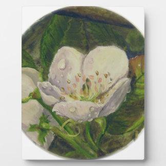 Pear Blossom Dream Plaque
