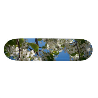 Pear Blossom Sky Skate Decks