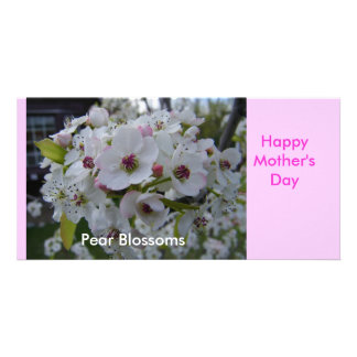 Pear Blossoms, Happy Mother's Day Card Customized Photo Card