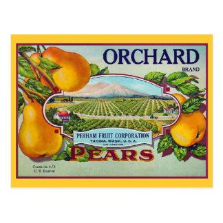 Pear Fruit Vintage Crate Label Postcard