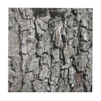 Pear tree bark texture background ceramic tile