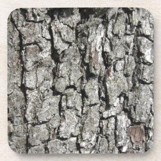Pear tree bark texture background coaster
