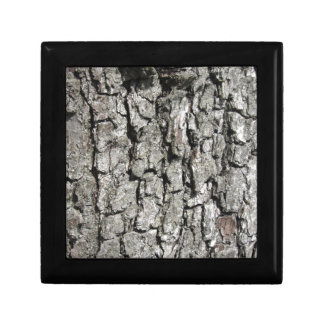 Pear tree bark texture background gift box