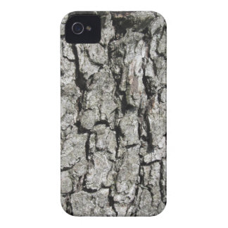 Pear tree bark texture background iPhone 4 Case-Mate cases