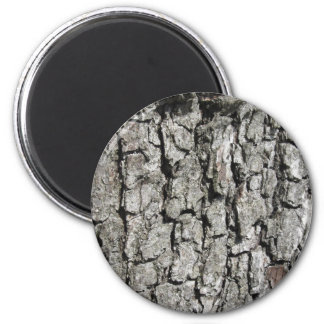 Pear tree bark texture background magnet