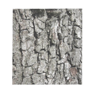 Pear tree bark texture background notepad