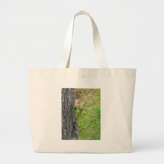 Pear tree twig with buds in spring  Tuscany, Italy Large Tote Bag