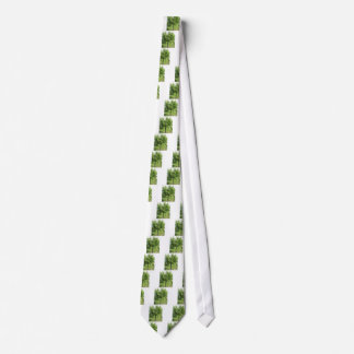 Pear tree with green leaves and red fruits tie