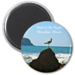 Pearl of the Pacific Mazatlan Mexico Bird Refrigerator Magnets