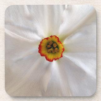 pearl white narcissus coaster
