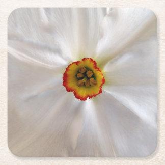 pearl white narcissus square paper coaster