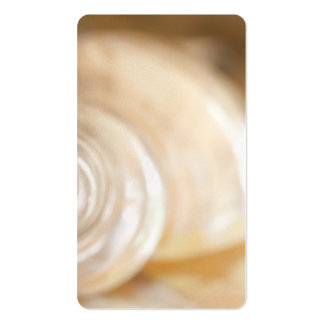 Pearly White Sea Shell Marine Nature Double-Sided Standard Business Cards (Pack Of 100)