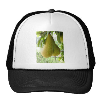 Pears on tree branches trucker hats