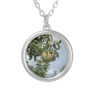 Pears on tree branches round pendant necklace
