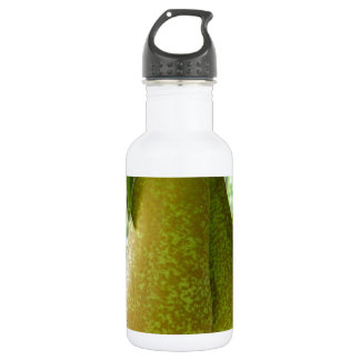 Pears on tree branches 532 ml water bottle