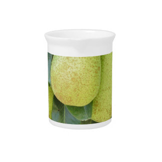 Pears on tree branches drink pitcher