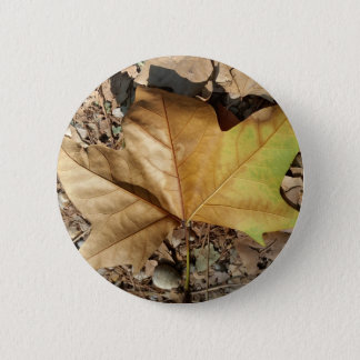 pebbles and leaves 6 cm round badge