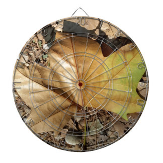 pebbles and leaves dartboard