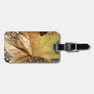 pebbles and leaves luggage tag