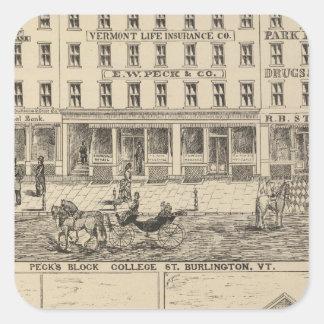 Peck s Block Square Sticker
