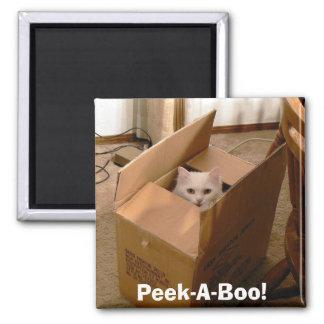 Peek-A-Boo! 2 Square Magnet