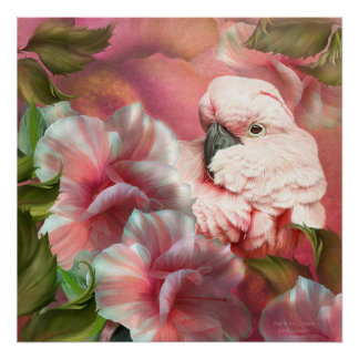 Peek A Boo Cockatoo Fine Art Poster/Print Poster
