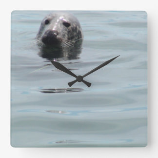 Peek A Boo Funny Seal Peeking his Head Out Square Wall Clock