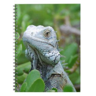 Peek-a-boo Iguana Spiral Note Book