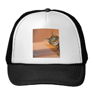 Peek A Boo Kitty Cat Cap