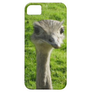 Peek-a-boo ostrich phone case barely there iPhone 5 case