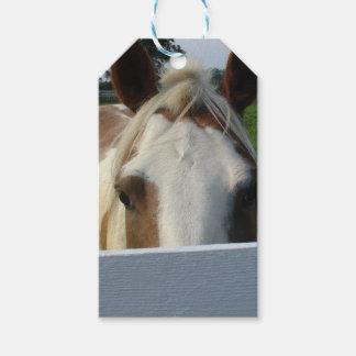 Peek a Boo Palomino Horse Behind Fence Gift Tags