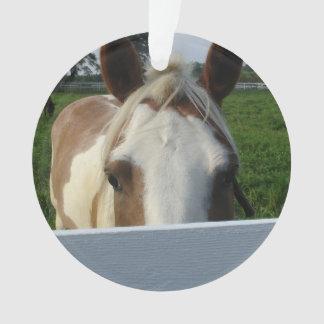 Peek a Boo Palomino Horse Behind Fence Ornament