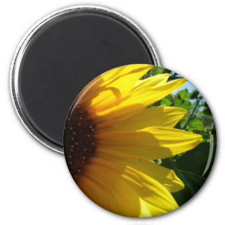 Peek A Boo Sunflower 6 Cm Round Magnet